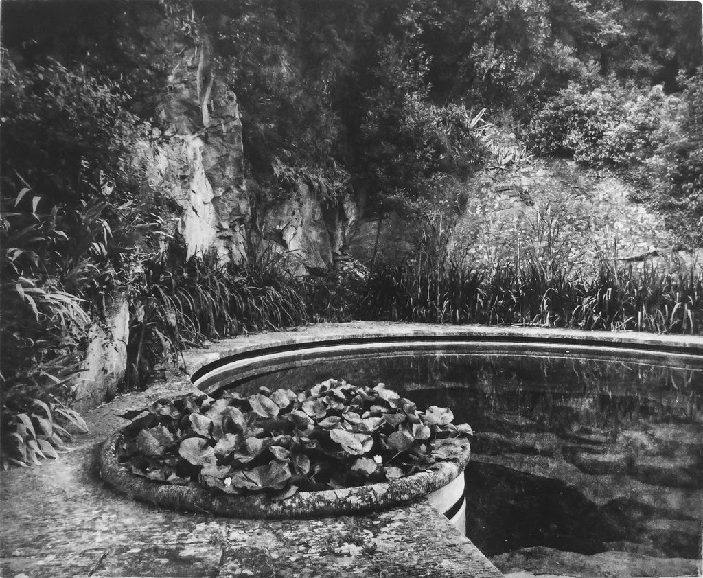 McLachlan, Ted Villa Fontanelle, Florence - Lotus Pool