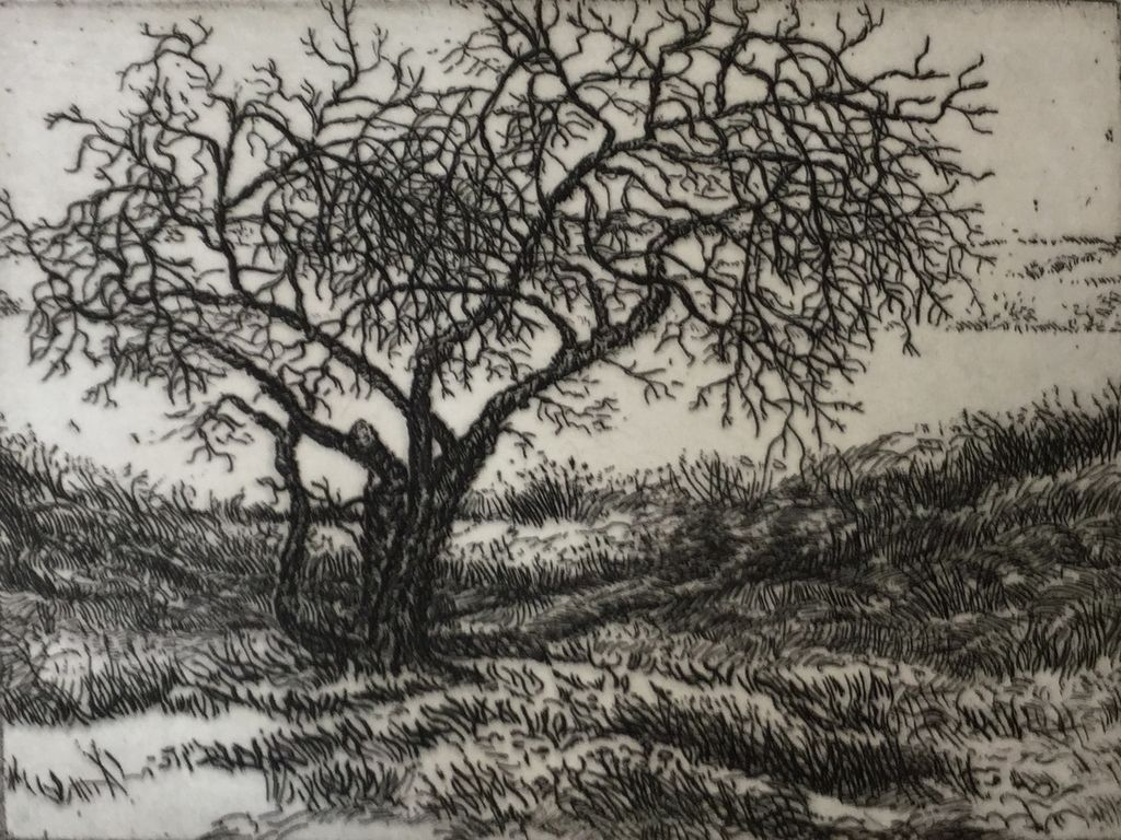 Simoens, Leo Old Apple Tree