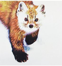 Graham, Peter Pine Marten (Candied Mammals of the Boreal Forest)
