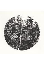 Josephson-Laidlaw, Erin Crossing