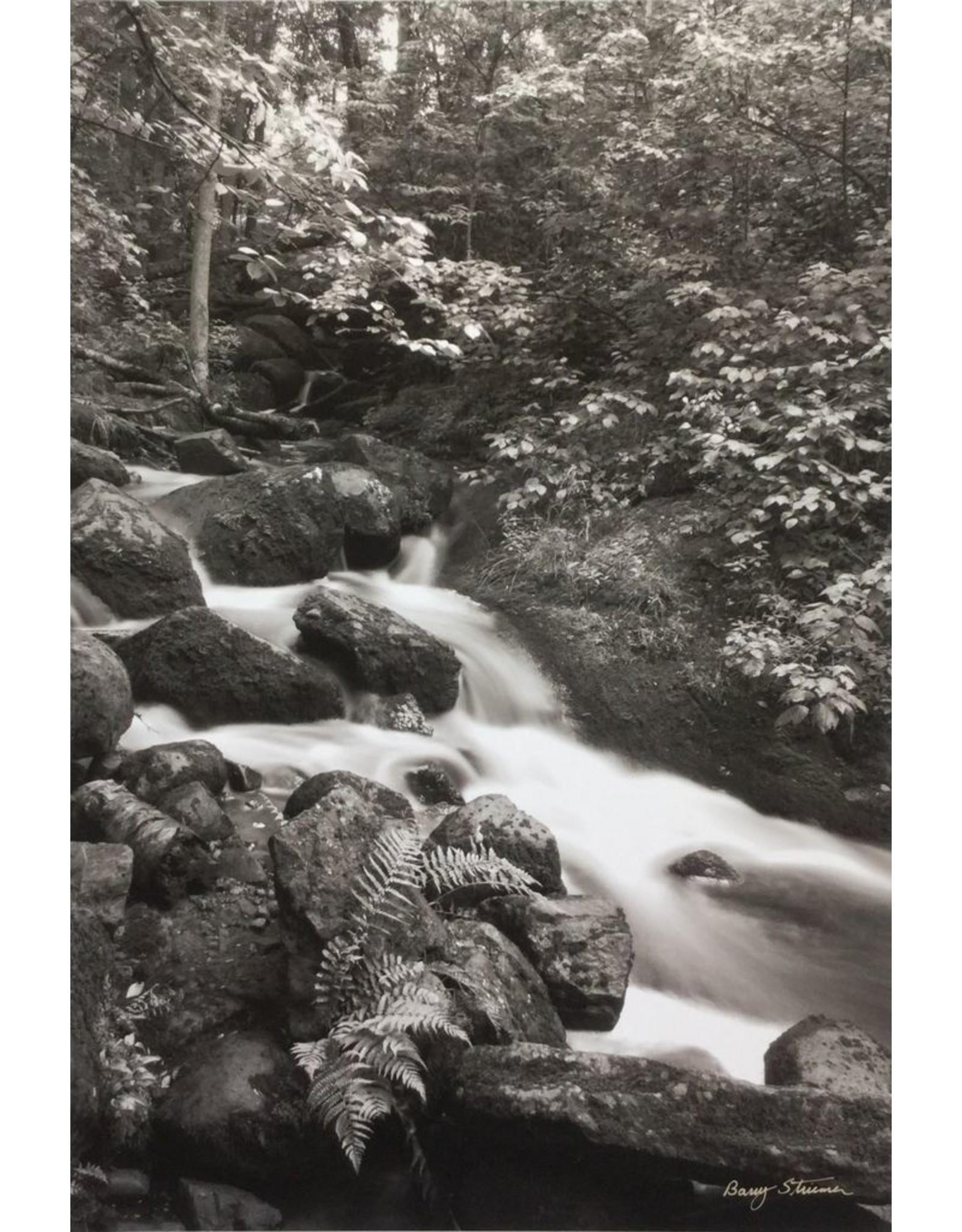 Striemer, Barry McGillivray Falls