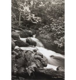 Striemer, Barry McGillivray Falls