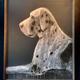 Thomas Bucich - Maya III - Mixed Media on Board, Framed - <br /> Image size H120cm x W100cm