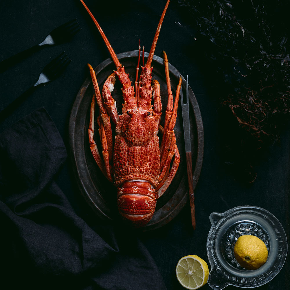 LUC LUCASA Napkins - Set of 4  Crayfish  - Photographed by Tasmanian photographer Samuel Shelley and styled by food-stylist Michelle Crawford 50x50cm