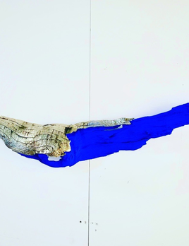 Thomas Bucich - Little Wing Nickel electroplated bark, pigment 30 x 130 x 15 cm