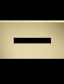 DW - Tissue Box - Rectangular - Matte Gold - 25x12xH7.5cm - Germany