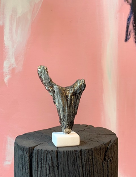 Thomas Bucich - Relic XX, Small 2019 - Nickel Electroplated Wood on Marble Base - 12x20x10cm