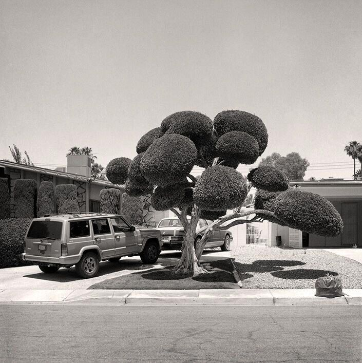 #4 - 99 Miles from LA - James King - 18x18cm (38x37cm framed) - Editions of 5
