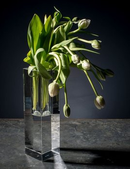 BECKER MINTY BECKER MINTY Cubik Collection - Tall Wide Hole Vase - Crystal Glass - Clear - 10x10x35cm