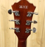 Ibanez Ibanez AS Artcore 6str Electric Guitar  - Green Valley Gradation