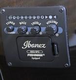 Ibanez Ibanez AEWC300NNB Acoustic/Electric Guitar