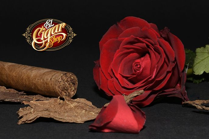 Top Cigars for Valentine's Day