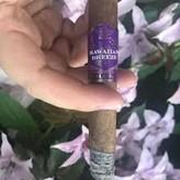 Esteban Carreras Hawaiian Breeze Purple Haze Corona by Esteban Carreras
