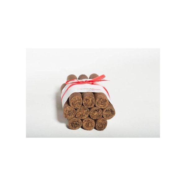 El Titan de Bronze El Cigar's Family Series S.G. 10 Pak Corojo Robusto