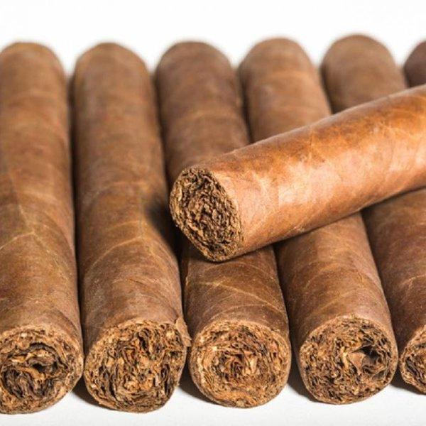 El Titan de Bronze El Cigar's Family Series S.G. Corojo Toro