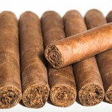 El Titan de Bronze El Cigar's Family Series S.G. 5 Pack Corojo Robusto