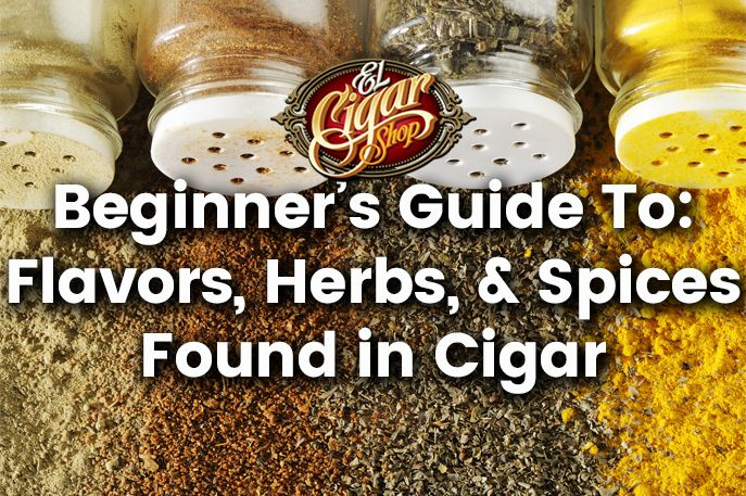 Beginner's Guide to Flavors Herbs and Spices Found in Cigars
