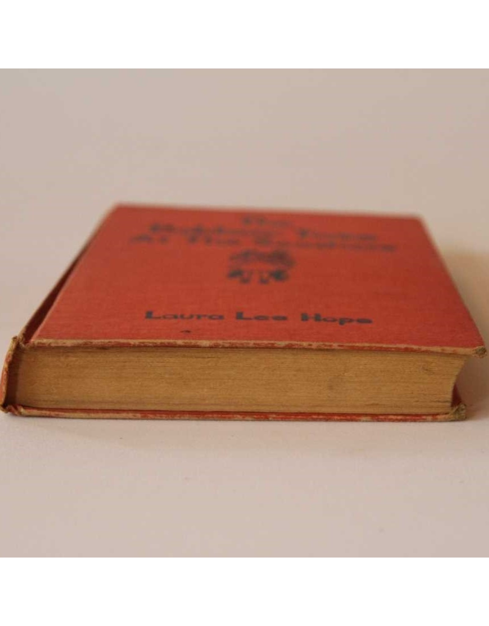 Book: The Bobbsey Twins at the Seashore by Laura Lee Hope, hardcover. The Goldsmith Publishing Co.