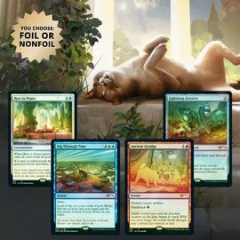 Wizards of the Coast Magic Secret Lair - Every Dog Has Its Day (Foil)