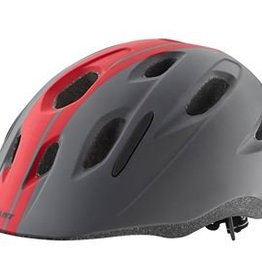 Giant Hoot Helmet