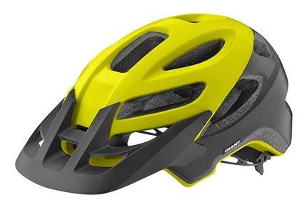 Giant Roost Helmet