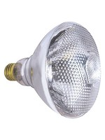 LAMP LITE LL-PAR38 LAMP LITE