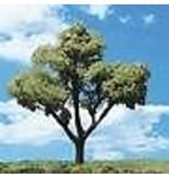 "WOO #TR3545, Woodland Scenics Early Light Trees 3/4""- 1 1/4"" (8)"