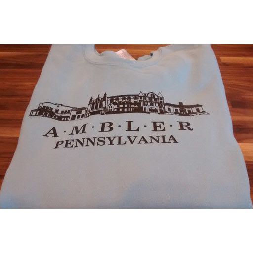 Choo Choo's BLUE - MEDIUM - Ambler Sweatshirt