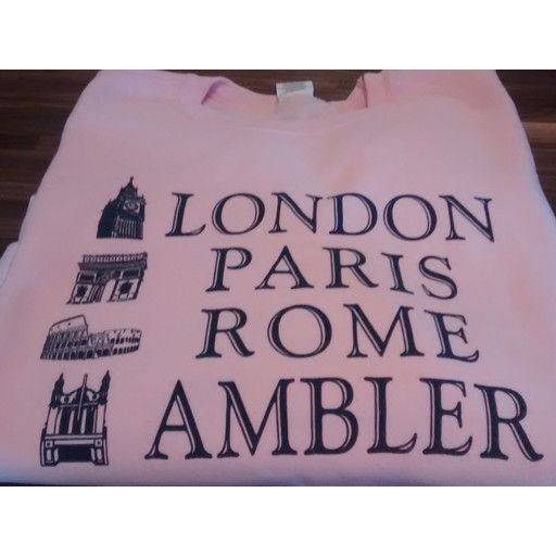 Choo Choo's PINK - XL - London, Paris, Rome, Ambler SWEATSHIRT