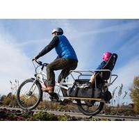 Spicy Curry Bosch Electric Bike