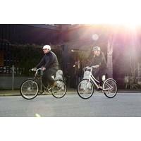 Cortland S Electric Bike