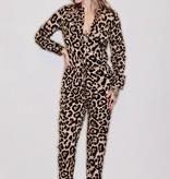 DA81- 36Point5- Leopard Print Jumpsuit