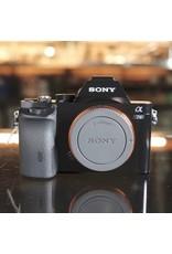 Sony Sony A7s.