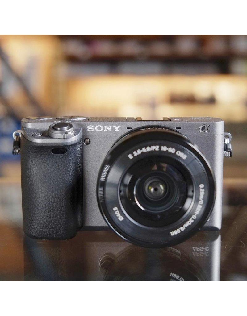 Sony Sony A6000 w/ 16-50mm f3.5-5.6 OSS.