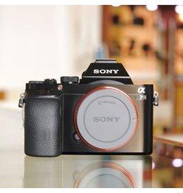 Sony Sony A7.