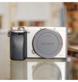 Sony Sony A6000.