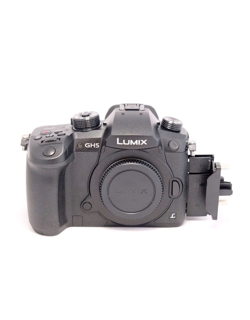 RENTAL Panasonic Lumix GH5 rental.