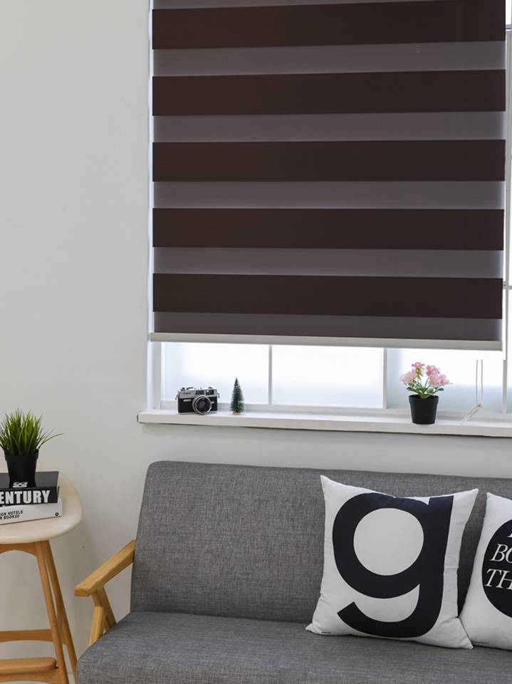 Trendy Blinds Combi Joker 1 Tone BO room darkening [CMTD-J1]