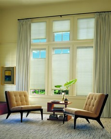 Hunter Douglas Applause Honeycomb Shades by Hunter Douglas
