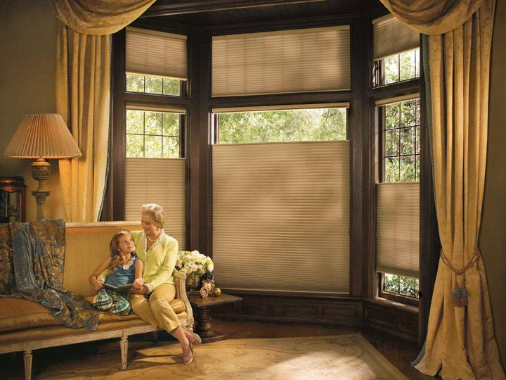 Hunter Douglas Duette Honeycomb Shades by Hunter Douglas