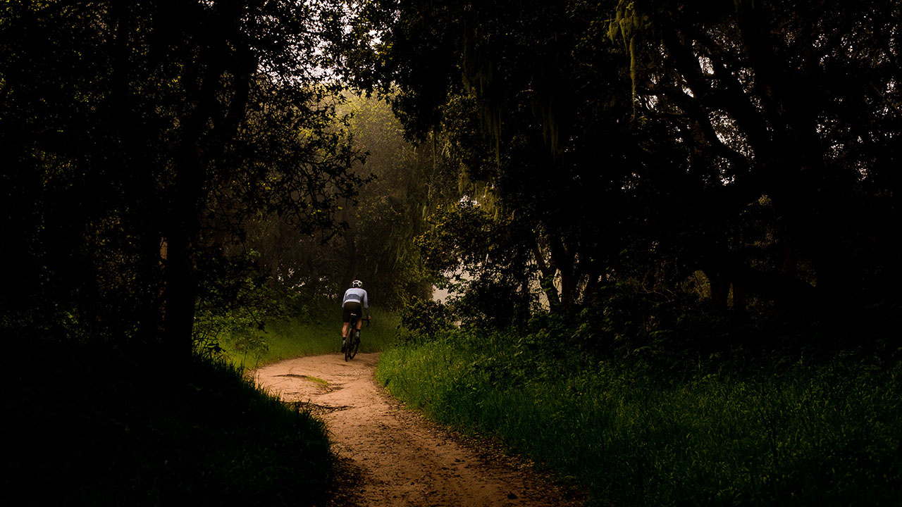 Les secrets d'été de Monsieur T.: vélo