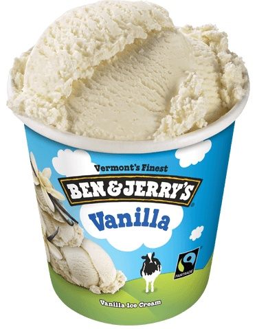 Ben & Jerry's Vanilla Ice Cream 1 Pint