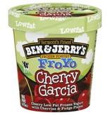 Ben & Jerry's Cherry Garcia Frozen Yogurt FroYo 1 Pt