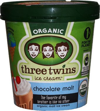Three Twins Organic Chocolate Malt Ice Cream 1 pt