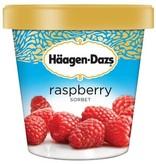 Haagen Dazs Raspberry Sorbet 14 oz
