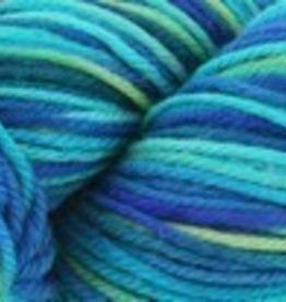 Cascade Cascade 220 SuperWash Paints 9862 SEAS