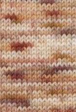 Araucania Araucania Huasco Sock HP 1001 CAPUCHINBIRD