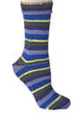 Berroco Berroco Comfort Sock 1832 STORMY SKY