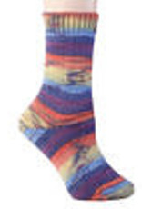 Berroco Berroco Comfort Sock 1831 ROTORUA