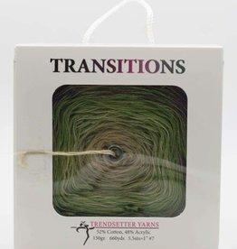 Trendsetter Trendsetter Transitions